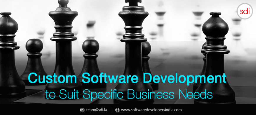 Custom Software Development to Suit Specific Business Needs